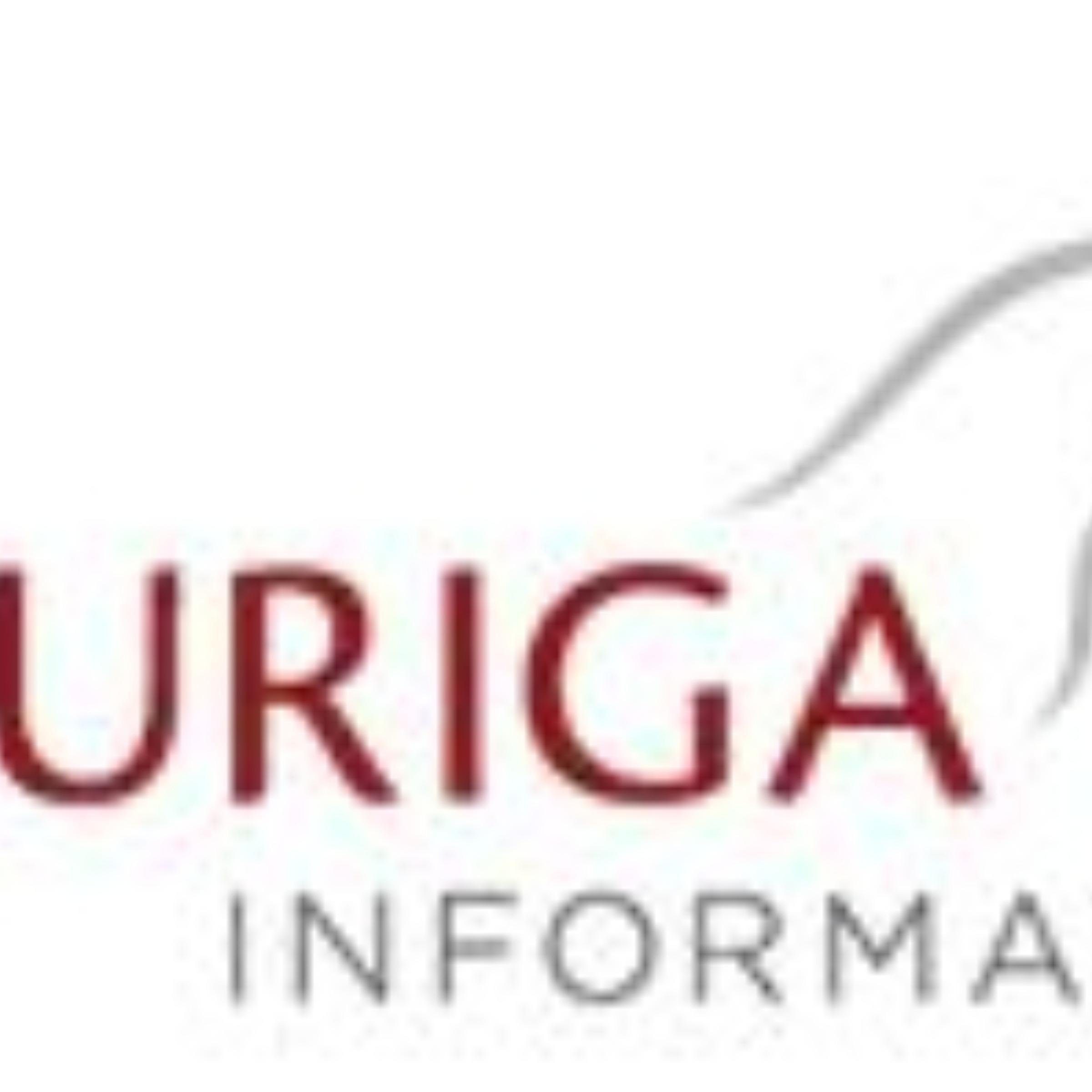 Auriga Informatik GmbH